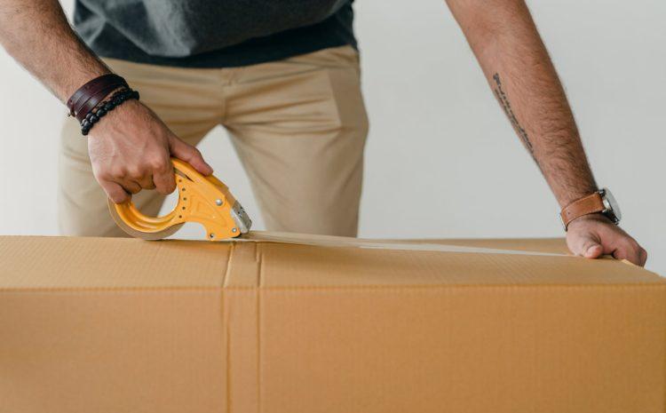 ¿Por qué es importante asegurar su carga?